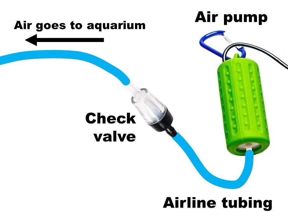 Cómo colocar una bomba de aire en un acuario