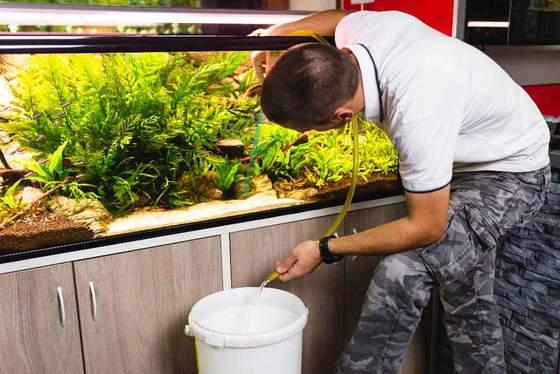 Cómo usar una aspiradora de grava para limpiar acuarios