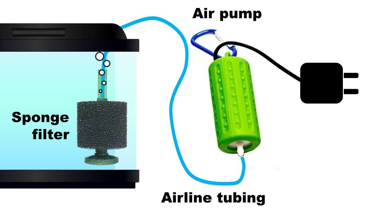 Instalación de configuración de filtro de esponja