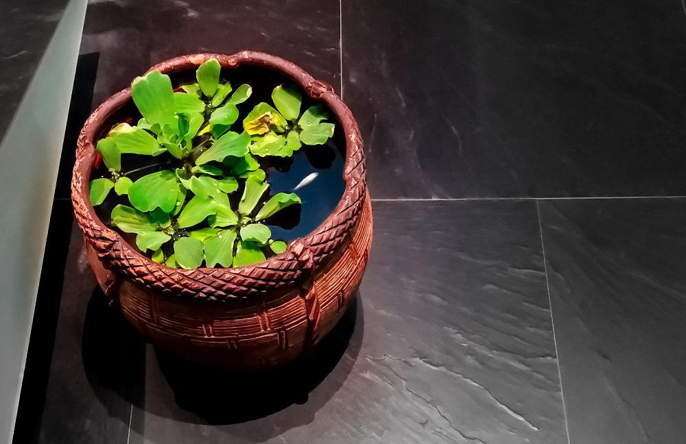 maceta decorativa utilizada como mini estanque