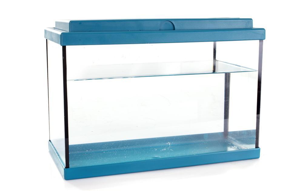 acuario de cristal con borde