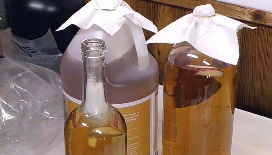 Ponga hilo de filtro en vinagre de cultivo de anguila