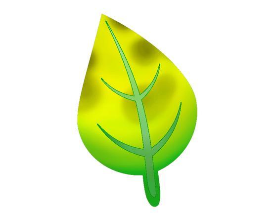 Hoja 4 - deficiencia de fosfato