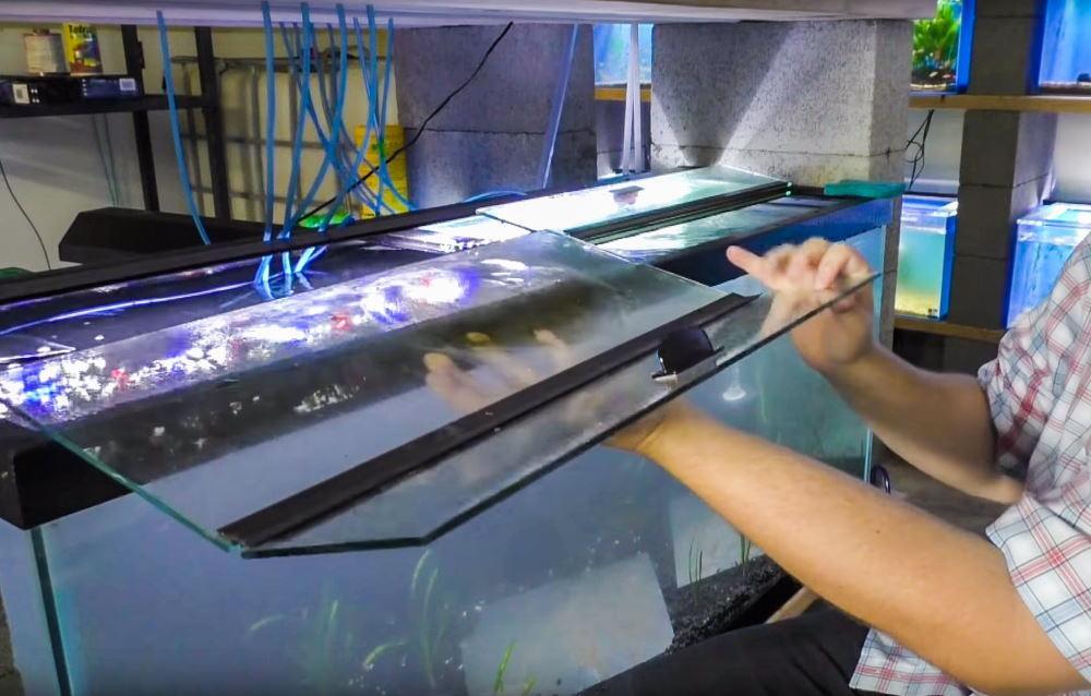 Tapa de cristal para acuarios