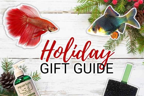 Más de 10 ideas de regalos navideños para su acuaristafavorito