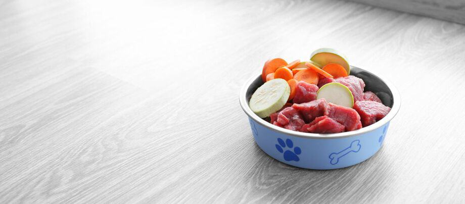 La dieta BARF correcta: una dieta equilibrada para tu perro a base de alimentos crudos