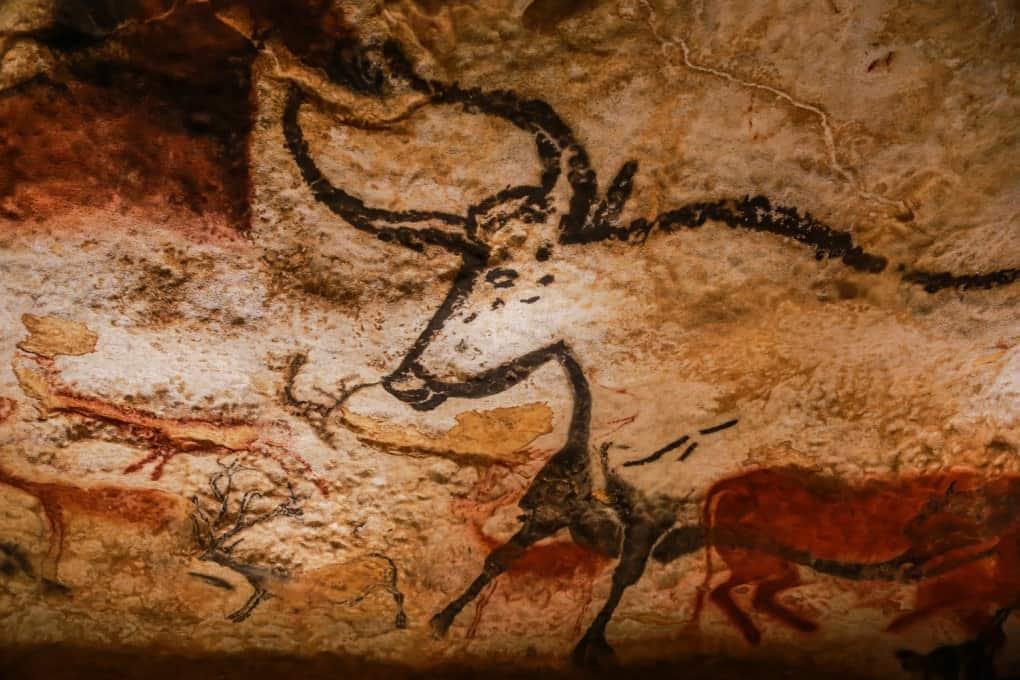 Un uro dibujado hace 17.000 años en las paredes del complejo de cuevas ahora conocido como las Cuevas de Lascaux, en Francia.
