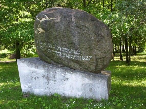 En memoria de los últimos uros (Jaktorów, Polonia).